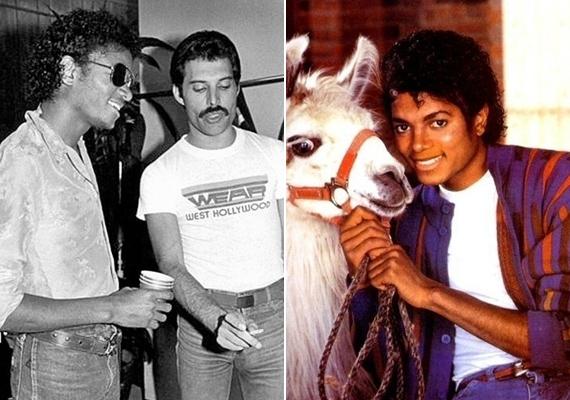Freddie Mercury és Michael Jackson nagyon jó barátok voltak, még egy közös dalt is szerettek volna együtt felvenni, azonban Michael magával vitte a felvételekre szeretett lámáját, akitől nem lehetett dolgozni. Freddie végül feladta, így sajnos nem énekelt duettet a két legendás énekes.