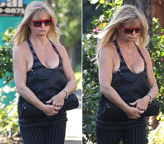 Az Oscar-díjas Goldie Hawn nem az ízléséről és kifogástalan megjelenéséről híres.