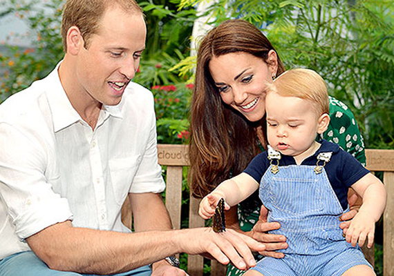 A kiállításon György herceg meg is próbálta megsimogatni az egyik lepkét, óvatosan nyúlt felé, nehogy elrepüljön.