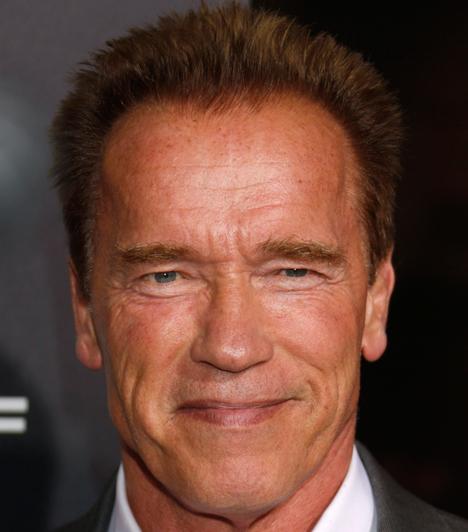 Arnold Schwarzenegger  A Terminátor saját házvezetőnőjükkel szűrte össze a levet és egy fia is született a kapcsolatból, ám ezt eltitkolta a felesége elől.
