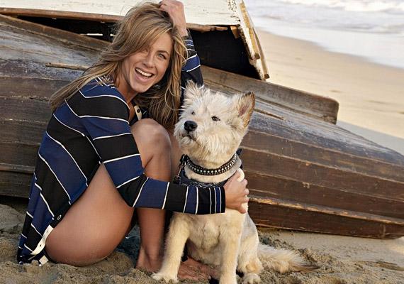 Jennifer Aniston imádta a kutyusát, Normant, aki végül 15 éves korában, májusban halt meg, a színésznő nagy bánatára.