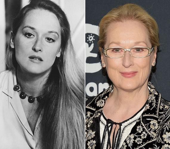 Meryl Streep lassan négy évtizede van a pályán, de még mindig rendkívül sikeres, a neve garancia arra, hogy a mozinéző közönség olyan filmre ül be, amit érdemes megnézni. A három Oscar-díjjal rendelkező sztár vígjátékban és drámában is megállja a helyét, híresebb filmje közé tartozik a Kramer kontra Kramer, A francia hadnagy szeretője, a Távol Afrikától, A szív hídjai, Az ördög Pradát visel vagy a 2014-es Vadregény. 1978 óta Don Gummer a férje, négy gyermekük született. Június 22-én lesz 66 éves.