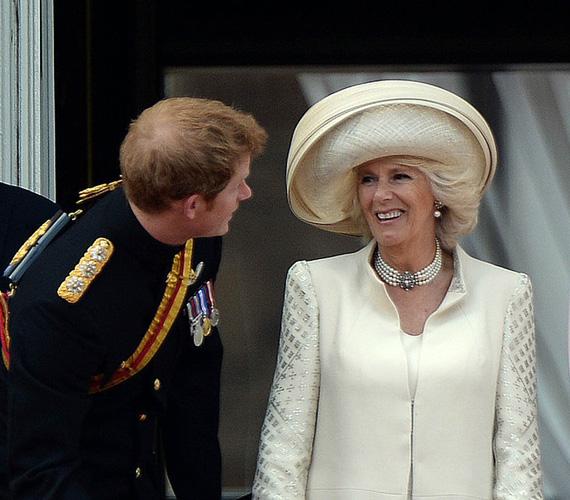 Családszerető: ugyan időről időre felröppennek a pletykák, hogy milyen rossz viszonyban van Kamilla Diana gyermekeivel, Katalin hercegnővel vagy II. Erzsébettel, ez nincs így. Még Harry és Vilmos is megkedvelték apjuk új feleségét, aki közvetlenségével levette őket a lábukról.