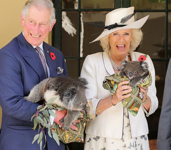 Jó kedélyű: bármilyen eseményen is vesz részt, Kamillát biztos, hogy lefotózzák tele szájjal nevetve. Jókedve általában férjére és a környezetükre is átragad, amitől sokkal szimpatikusabb fényben tűnik fel a brit királyi család az alattvalók szemében.