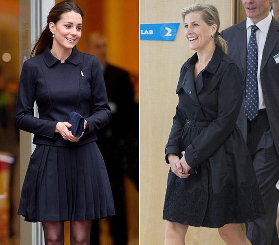 Mint egyszer Sophie bevallotta, míg a gyermekei kicsik voltak, nem törődött a divattal, mindig lapos cipőben és egyszerű ruhákban járt.