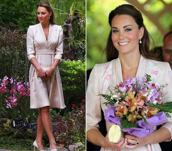 Ezt a halvány rózsaszín selyemruhát, amelyet Szingapúrban öltött magára ősszel, egy brit tervező, Jenny Packham álmodta meg.