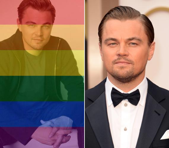 """""""Ne, Leo te is meleg vagy?"""" - írta egy hozzászóló Leonardo DiCaprio megváltozott profilképe alá, ami fent a bal oldalon látható. A színész egyébként nem meleg, de egyetért azzal, hogy a házasság a szeretetről szól és nem a nemekről."""