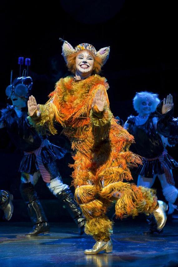 Andrew Lloyd Webber zenéje, az elképesztő látványvilágot bemutató díszlettervezés, a szereplő macskák egyéniségét és történetét kifejező rendkívüli jelmezek és a váratlanságával lenyűgöző koreográfia teszi egyedülállóvá az előadást. A CATS 1981. május 11 óta csak Londonban majdnem kilencezerszer került előadásra.