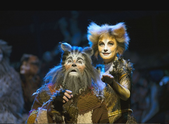 A Broadway és a West End egyik leghosszabb ideje futó és legsikeresebb show-jának világ turnéja már több mint 300 városban varázsolta el a közönséget szerte a világon. A Macskák musical a fantasy, dráma és a romantika keveréke. Eddig több mint 50 millió ember látta, 26 országban mutatták be és 10 nyelvre fordították le.