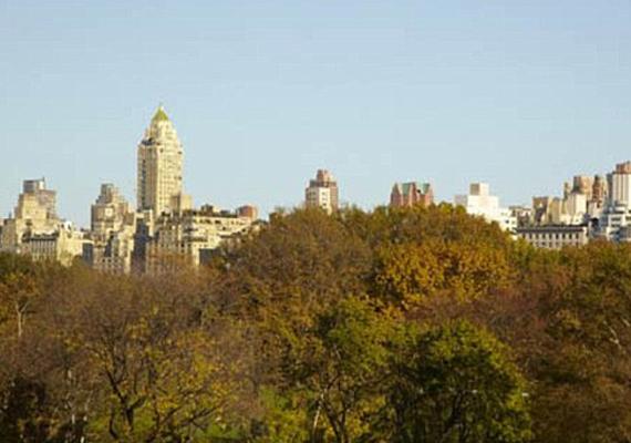Az erkélyről kinézve a Central Park fái és New York emeletes házai pazar látványt nyújtanak.
