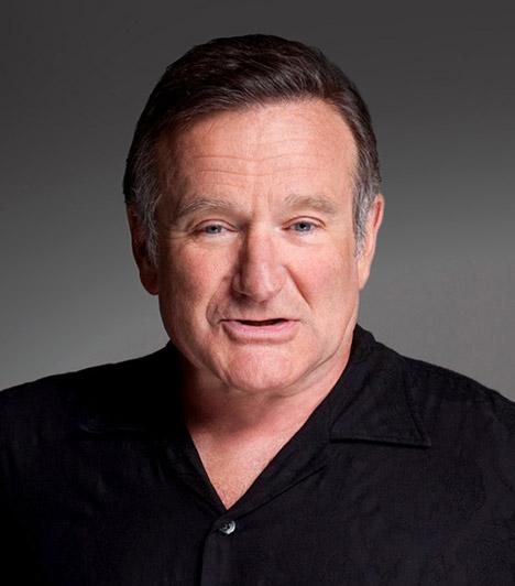 Robin WilliamsA szeretett komikus 2014. augusztus 11-én önkezével vetett véget életének. Parkinson-kórban szenvedett és nem akarta, hogy a betegség eluralkodjon rajta.