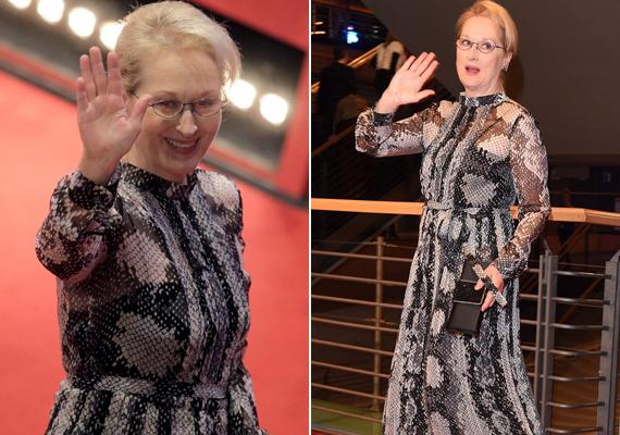 Meryl Streep láthatóan élvezi németországi kiruccanását, egész este nevetgélt a rajongói körében, a szerencsésebbek még egy autogrammal is gazdagodhattak.