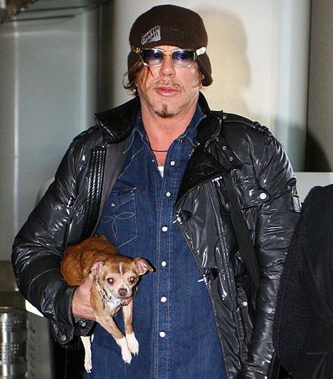 Kutyájával  A Golden Globe-díjátadóra kedvenc kutyájával, Lokival érkezett, aki sajnálatos módon nem sokkal később elpusztult.