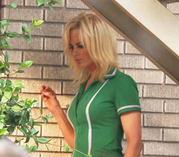 Kidman a dúskeblű, barna, latin bombázót, Sophia Vergarát váltotta a szerepben, mint látszik, Nicole kedvéért a rendezőnő teljesen újragondolta a karaktert.