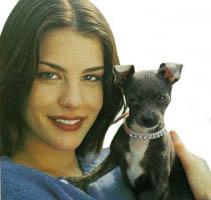 Liv Tyler régi kutyája