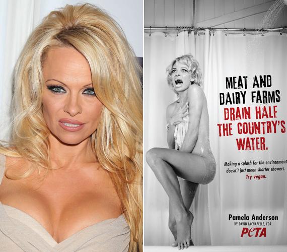 A Baywatch 48 éves szőke bombázója, Pamela Anderson már hosszú ideje a harcos állatvédő szervezet, a PETA egyik arca. A sztár legutóbb májusban vett részt az egyik kampányukban, amelyben arról volt szó, hogy a húsukért tartott állatokkal zsúfolt farmok elhasználják a világ ivóvízkészletének csaknem egyharmadát. Szerintük erre a legjobb megoldás a vegán életmód lenne.