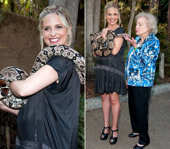Mosolyogva hagyta, hogy a hatalmas kígyó a karjára tekeredjen, és a vállára kússzon. 88 éves színésznő kollégája, Betty White szintén híres arról, milyen bevállalós. Ő még csókot is hintett a hüllő felé.