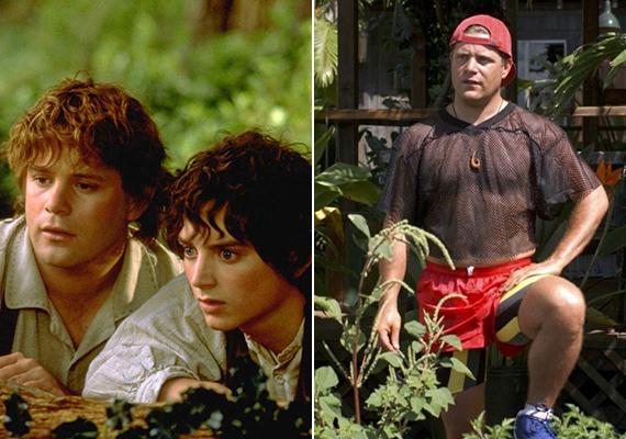 Az ezt követő években Sean csak kisebb szerepekben bizonyított, egészen 2001-ig, amikor is megkapta a hű barát, Csavardi Samu szerepét A Gyűrűk Ura trilógiában. A három film forgatása után a színész más jellegű kihívásokat keresett, ezért is vállalta el Drew Barrymore habókos bátyjának a szerepét Az 50 első randi című filmben.