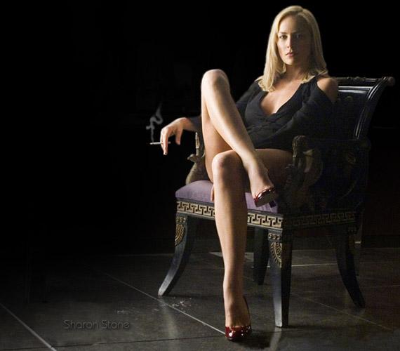 Sharon Stone-t az Elemi ösztön óta sem felejtették el legnagyobb rajongói: a róla készült háttérképek és bikinis fotók gyakran kerülnek elő a különböző rajongói fórumokon.