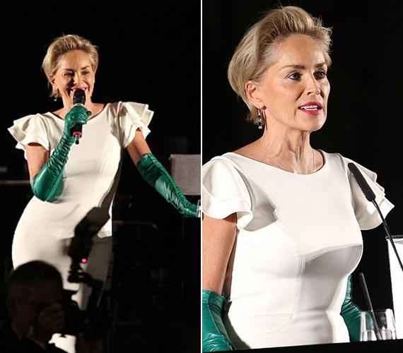 A gálán a hírességek felszólalhattak a rászorulók érdekében, ezt tette Sharon Stone is. A színésznő híres nagy szívéről, korábban díjjal jutalmazták humanitárius munkájáért.