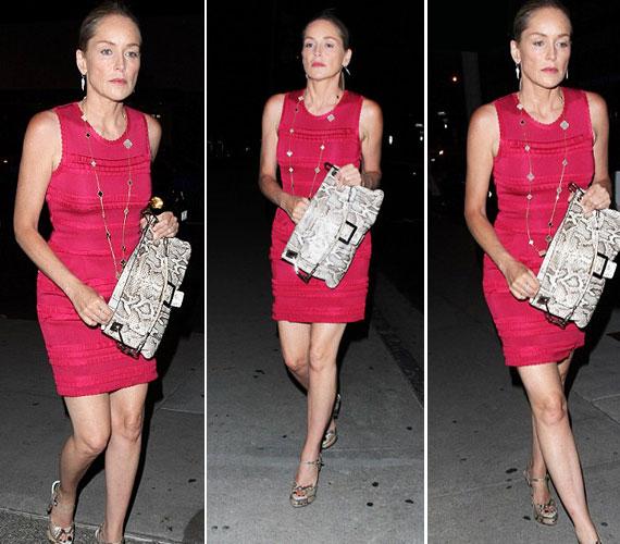 Sharon Stone divatos, szexis, megközelíthetetlen dívaként vonult végig a fotósok közt, alig eresztett meg egy félmosolyt.