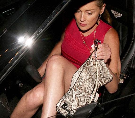 Amikor kiszállt a kocsijából, kis híján megismétlődött az Elemi ösztön híres jelenete, de a színésznő még idejében eltakarta magát a táskájával.