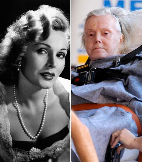Gábor Zsazsa  A zsidó származású, Golden Globe-díjas színésznő 1917. február 6-án született Budapesten, de később Amerikába emigrált. Hollywoodban hamar hírnevet szerzett magának a színészi teljesítményével, szépségével, valamint botrányaival.  Kapcsolódó sztárlexikon: Ilyen volt, ilyen lett: Gábor Zsazsa »