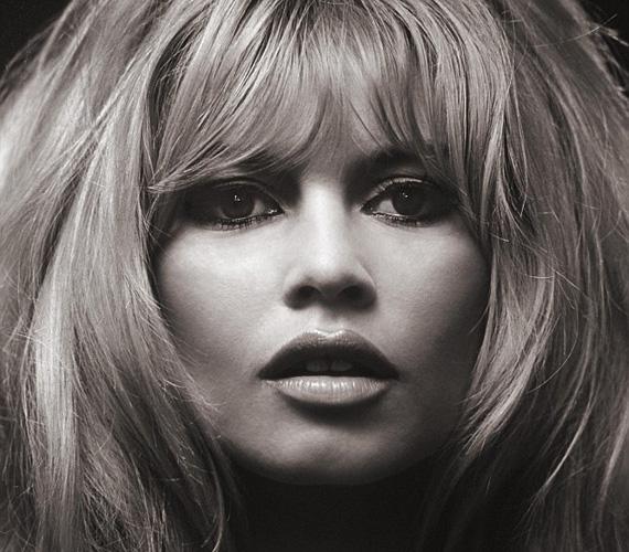 Brigitte Bardot 1967-ben állt modellt a híres fotósnak. A franciák szexszimbóluma ekkor volt a csúcson, kicsapongó életmódjáért ostorozta a sajtó, nők ezrei utánozták hajviseletét és ruházatát. Érdekesség, hogy Bardot mindössze hat év múlva visszavonult a színészettől, megcsömörlött a képmutatástól, és azóta is inkább az állatoknak szenteli az életét.