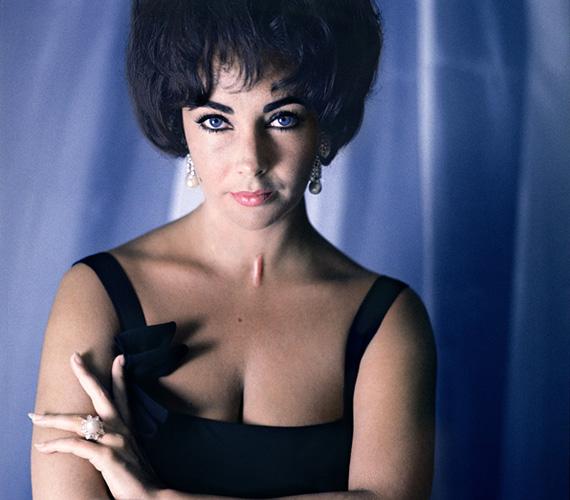 Liz Taylort szintén 1961-ben kapta lencsevégre. A 29 éves színésznő akkor éppen Eddie Fisher felesége volt, és olyan filmek voltak már mögötte, mint a Macska a forró bádogtetőn vagy a James Deannel készült Óriás. Illetve ebben az évben jelölték Oscarra a Modern kaméliás hölgy címszerepének eljátszásáért, végül meg is kapta a díjat. 2011-ben, 79 évesen hunyt el.