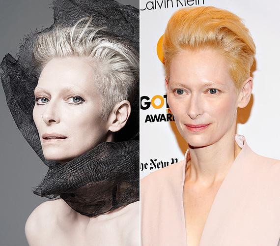 Az 54 éves Tilda Swinton a Nars kozmetikumokat képviseli 2015 tavaszától, Charlotte Rampling színésznőtől vette át a stafétát. A színésznő az androgün szépség megtestesítője, izgalmas feladat lehet vele dolgozni.
