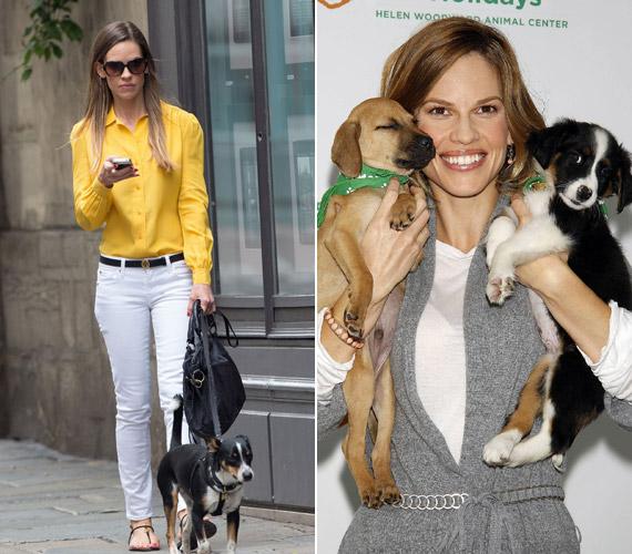 Hilary Swank, aki mindig is támogatta a menhelyeket, és sokszor felszólalt már az állatok megmentéséért, maga is örökbe fogadott két kutyát, Angelt és Seusst.