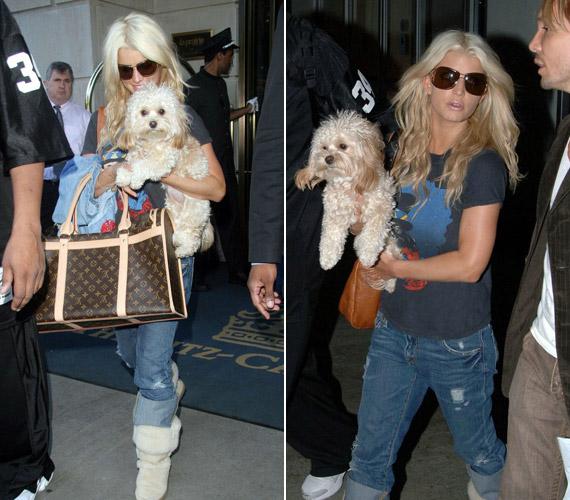 Jessica Simpson kezében egykori kedvencével, Daisyvel. A kiskutyát még első férjétől, Nick Lachey-től kapta, 2009-ben azonban elragadta egy prérifarkas - az énekesnő nagy bánatára, aki szinte gyerekeként szerette az állatot.