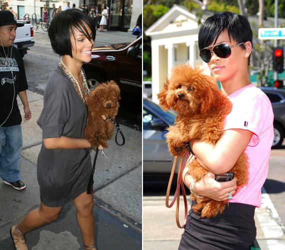 Rihanna rozsdaszínű kutyájával, Oliverrel.
