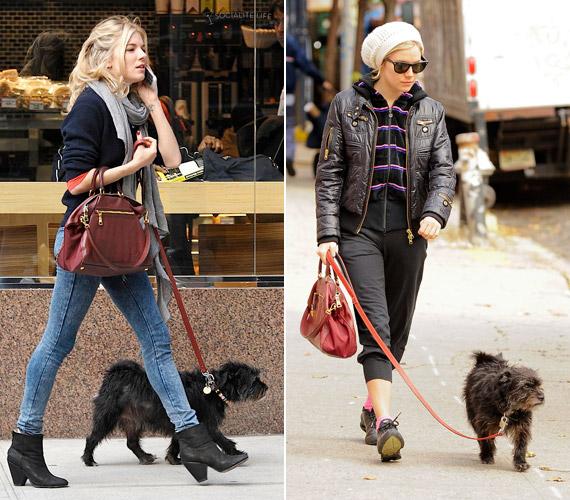 Sienna Miller kutyájával, Bess-szel. A pletykák szerint a színésznő állatrajongása is hozzájárult a Jude Law-val való szakításához még évekkel ezelőtt.
