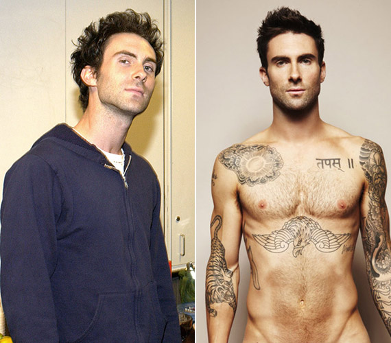 Adam Levine 1994-ben kezdte zenei karrierjét, azóta pedig töretlen a népszerűsége a Maroon 5 zenekarával. A The Voice műsorban a kezdetektől, 2011 óta szerepel.