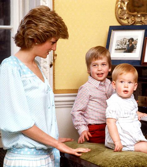 A kezdetek  Vilmos herceg 1982. június 21-én látta meg a napvilágot a londoni St Mary's Hospitalban, William Arthur Philip Louis néven. Öccse, Harry két évvel később született - mindketten rajongva szerették édesanyjukat, Dianát, aki 1997-ben halt meg autóbalesetben.  Kapcsolódó képgaléria: Harry herceg élete képekben »