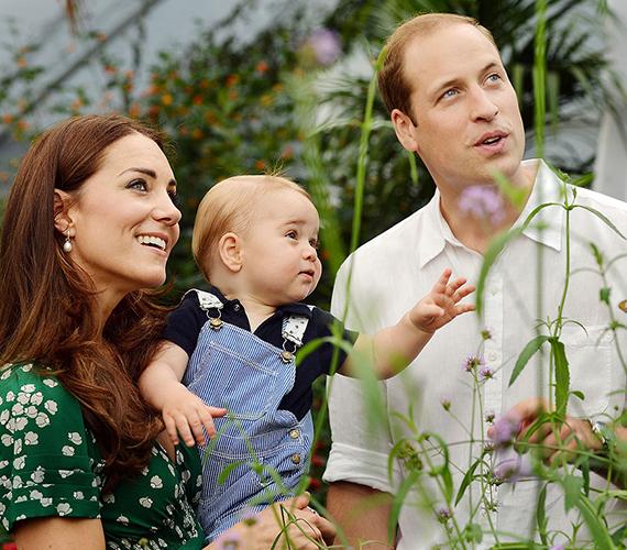 Katalin hercegnő és Vilmos herceg 2014. szeptember 8-án ismét nagy bejelentést tettek, elmondták, második babájukat várják. A kicsi a hírek szerint áprilisban születik, egyelőre nem tudni, hogy fiú lesz-e vagy lány. A családi fotókon tehát nemsokára feltűnik egy negyedik arcocska.