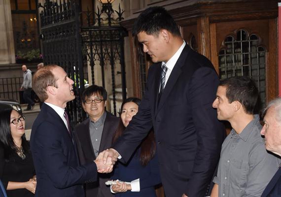 Vilmos herceg is elcsodálkozott a kosárlabdázó méretén, nem szokott hozzá, hogy ennyire felnézzen valakire.