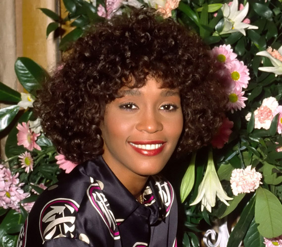 Sikereit és népszerűségét jól mutatja, hogy a Guiness Rekordok könyve szerint Whitney Houston volt a valaha legtöbbet díjazott női előadóművész.
