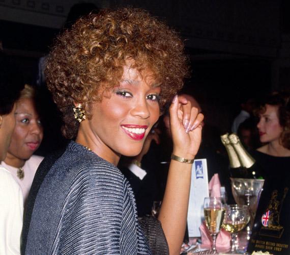 Első albuma 1985 februárjában jelent meg Whitney Houston címmel, amelyet az évek során további kilenc nagylemez követett.